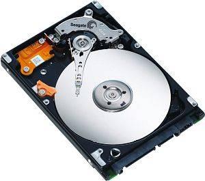 "Seagate Momentus 5400.6 6.4cm(2.5"")160GB/SATA/9.5mm Bulk"